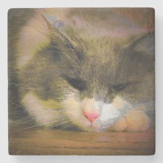 Pink the Cat Sullen Mood Sad Kitty Stone Coaster