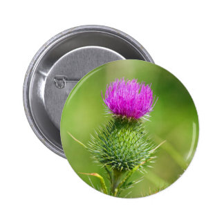 Pink thistle flower button, pin, great gift idea button