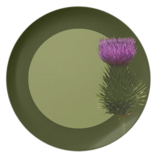 Pink thistle plate