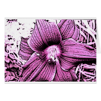 Pink Tigerlilly Card