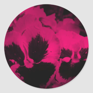Pink Tinted Pansies Classic Round Sticker