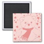 pink toned teddy bear fridge magnets