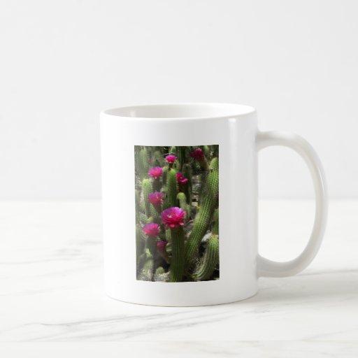 Pink Torch Cactus Classic White Coffee Mug
