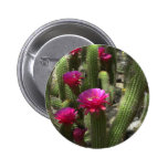 Pink Torch Cactus Pinback Buttons