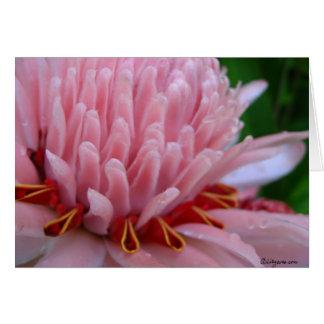 Pink Torch Ginger Wedding Card