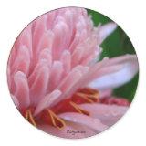 Pink Torch Ginger Wedding sticker