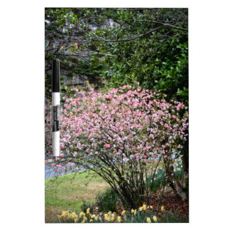 Pink Tree and Daffodils Dry Erase Whiteboards
