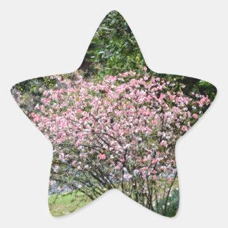 Pink Tree and Daffodils Star Sticker
