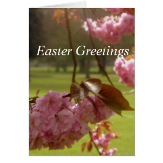 Pink Tree Blossom Easter Greetings Card