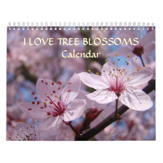 Pink Tree Blossoms Calendar White Blossoms Apple