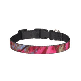 Pink Tree Dog Collar - Small