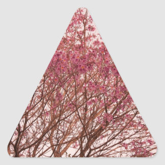 Pink Tree Photography Triangle Sticker