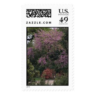 Pink Tree Stamp