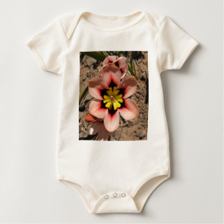 Pink Tricolored Sparaxis Flower Baby Bodysuit