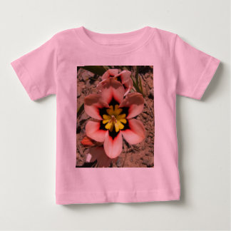 Pink Tricolored Sparaxis Flower Baby T-Shirt