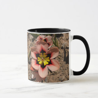 Pink Tricolored Sparaxis Flower Mug