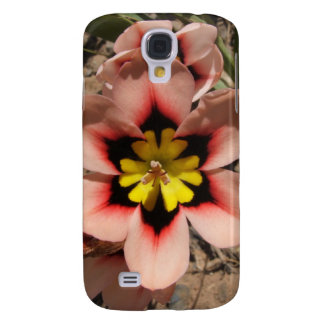 Pink Tricolored Sparaxis Flower Samsung Galaxy S4 Case