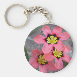 pink tricolored sparaxis flowers keychain