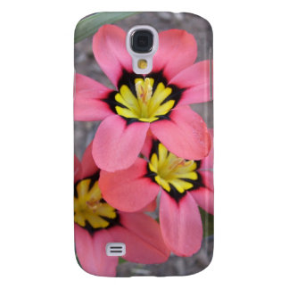 pink tricolored sparaxis flowers samsung s4 case
