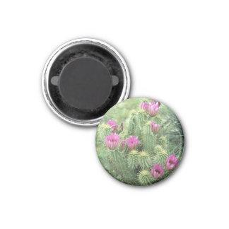 Pink Trill Desert Cactus Refrigerator Magnet