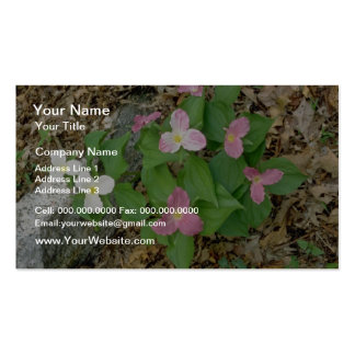 Pink Trilliums Quebec Canada flowers Business Card