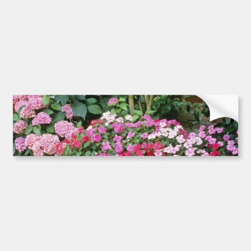 Pink Trough Planted With Busy Lizzies flowers Car Bumper Sticker