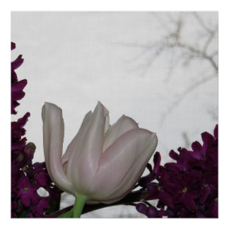 Pink Tulip And Purple Hyacinth Flowers Poster
