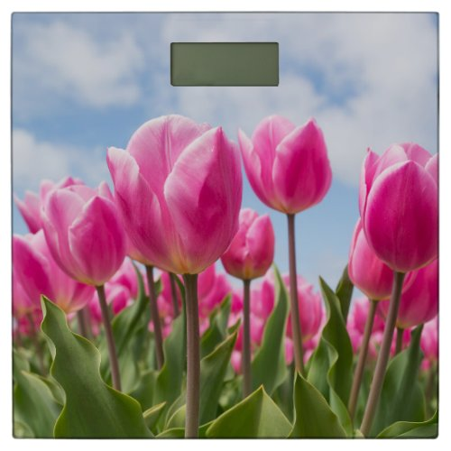 Pink Tulip Bathroom Scale