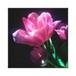 Pink Tulip Canvas Art