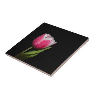 Pink Tulip Ceramic Tile