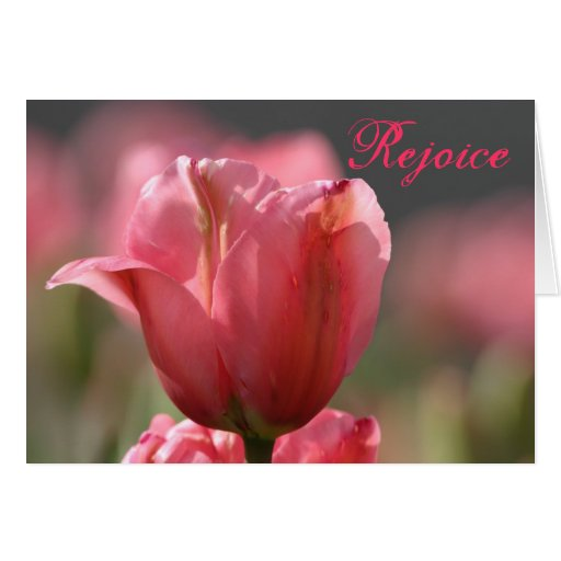 Pink tulip Easter greeting (h) Cards