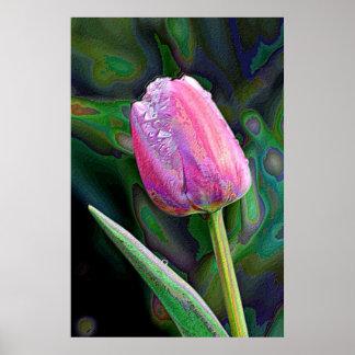 Pink Tulip Enhanced Poster