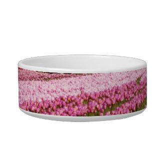 Pink Tulip Field Bowl