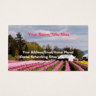 Pink Tulip Field Business Card