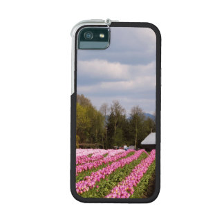 Pink Tulip Field iPhone 5 Cover