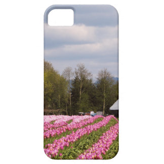 Pink Tulip Field iPhone 5 Covers