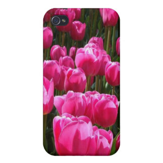 Pink Tulip Field Covers For iPhone 4