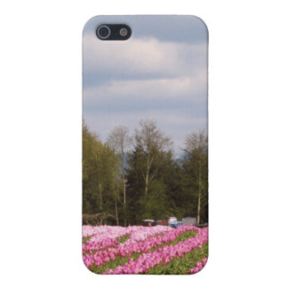 Pink Tulip Field Cover For iPhone 5