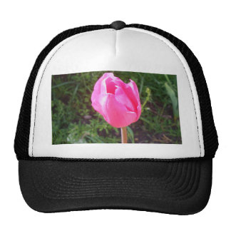 Pink Tulip Flower Staten Island NY CricketDiane Mesh Hat