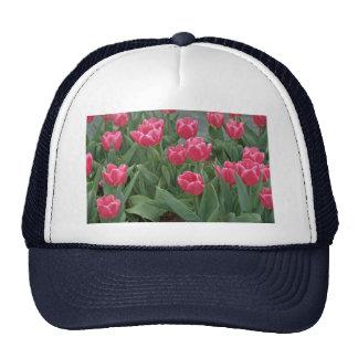 Pink tulip flowers hats