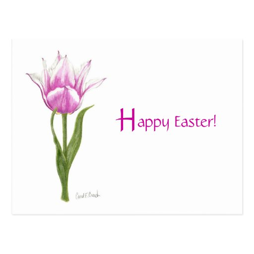 Pink Tulip - Happy Easter Postcard