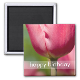 Pink Tulip Macro DSC0852 2 Inch Square Magnet