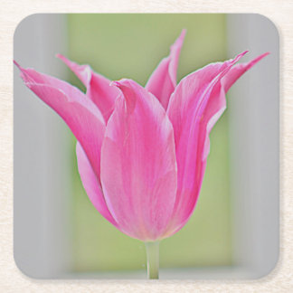 Pink tulip photo coaster