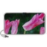 Pink Tulip Photo Speaker System