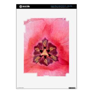 Pink Tulip iPad 3 Skins