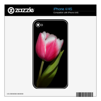 Pink Tulip Skins For iPhone 4