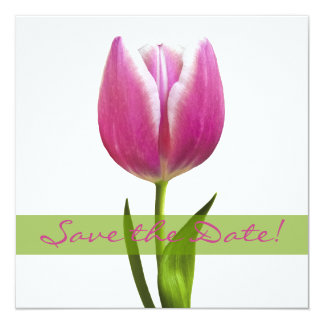 Pink Tulip Wedding Save the Date Announcement