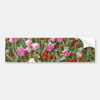 Pink Tulips and pansies flowers Bumper Sticker