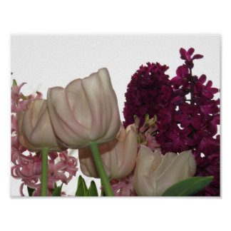 Pink Tulips And Purple Hyacinth Flowers Poster