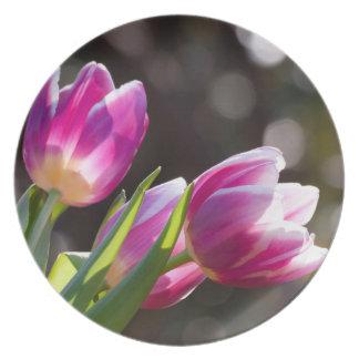 Pink Tulips Bokeh Melamine Plate